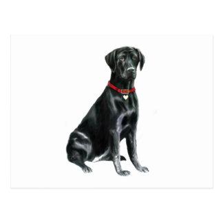 Cartão Postal Labrador retriever - preto 1