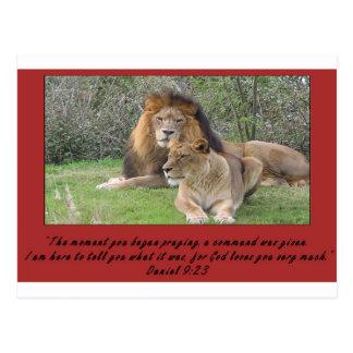 Cartão Postal Leão de Daniel com verso