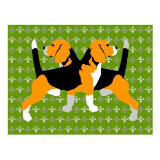 Cartão Postal Lebreiro