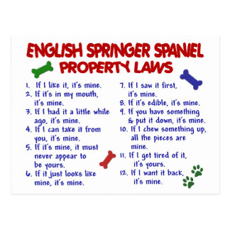 Cartão Postal Leis 2 da propriedade do SPANIEL de SPRINGER