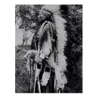 Cartão Postal Lobo branco, um chefe do Comanche, c.1891-98