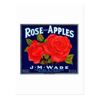 Cartão Postal Maçãs cor-de-rosa Wenatchee Washington
