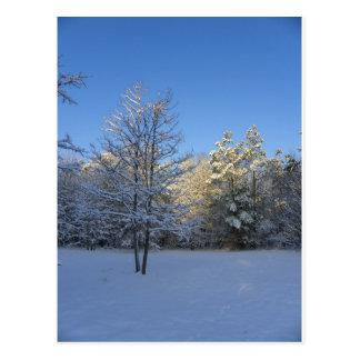 Cartão Postal Manhã nevado