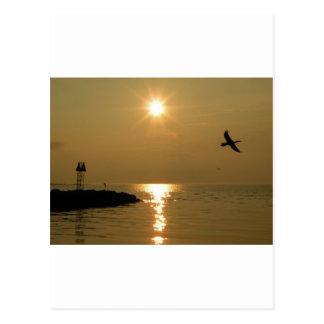 Cartão Postal Martha's Vineyard de Menemsha do por do sol #1