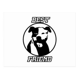 Cartão Postal Melhor amigo
