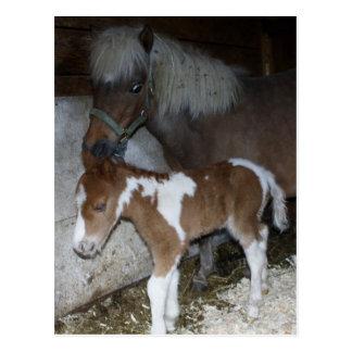 Cartão Postal Momma e bebê