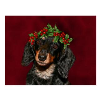 Cartão Postal Natal do Dachshund