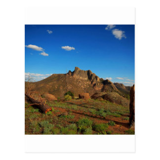 Cartão Postal Natureza bonita da garganta da natureza