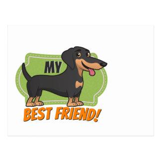 Cartão Postal O Dachshund é meu melhor amigo!