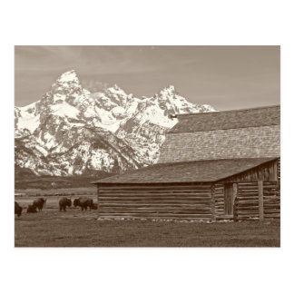 Cartão Postal O Tetons grande da fileira do Mormon