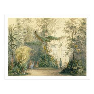 Cartão Postal O wintergarden do palácio de Hofburg, Viena, 1