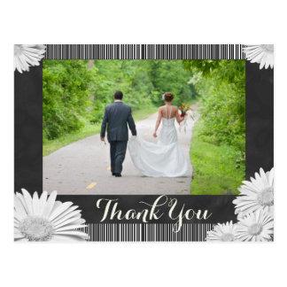 Cartão Postal Obrigado branco do quadro da margarida do Gerbera