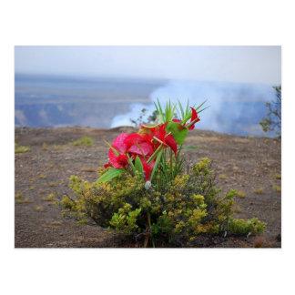 Cartão Postal Oferecendo a Pele, deusa havaiana do vulcão