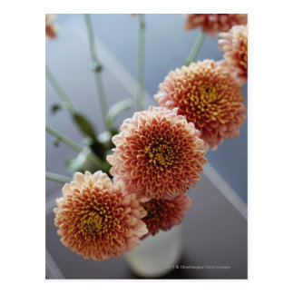 Cartão Postal Opinião de ângulo alto das flores em um vaso