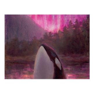 Cartão Postal Orca da baleia de assassino e aurora boreal