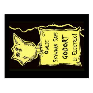 Cartão Postal Owlie Skywarn diz…
