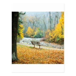 Cartão Postal Parque Missoula Montana de Greenough do outono