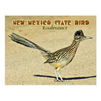 Cartão Postal Pássaro de estado de New mexico: Roadrunner