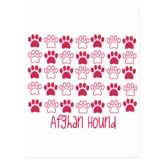 Cartão Postal Pata pelo galgo afegão da pata