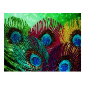 Cartão Postal Pavão colorido