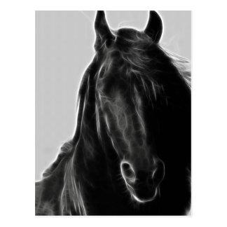 Cartão Postal Perfil do cavalo do frisão