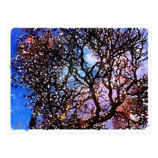 Cartão Postal photo-10.jpg
