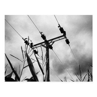 Cartão Postal Pilão preto e branco