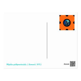 Cartão Postal Pin&Pon Popmejillon