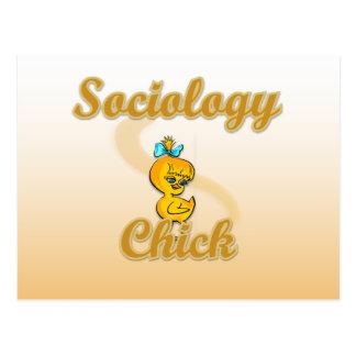 Cartão Postal Pintinho da Sociologia