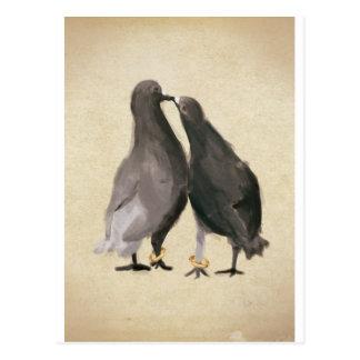 Cartão Postal Pombos românticos