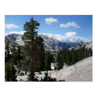 Cartão Postal Ponto III de Olmsted no parque nacional de
