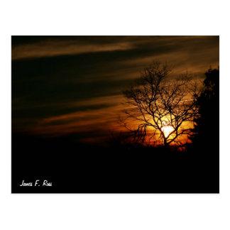 Cartão Postal Por do sol de Santa Cruz