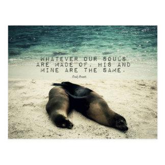 Cartão Postal Praia romântica Emily Bronte das citações do casal