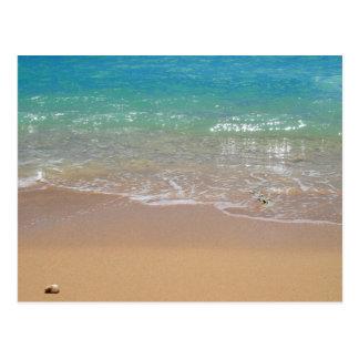 Cartão Postal Praia tropical - Waikiki, Oahu, Havaí