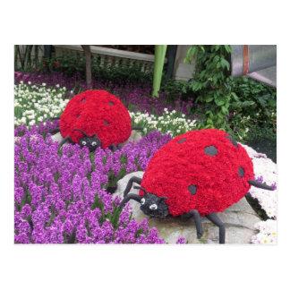 Cartão Postal Presentes cor-de-rosa do jardim da borboleta das