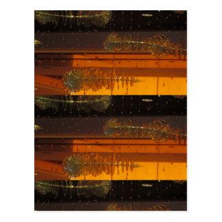 Cartão Postal PRESENTES INTERIORES da faísca do encanto de Las