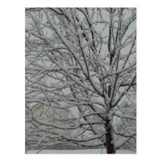 Cartão Postal Ramos nevado