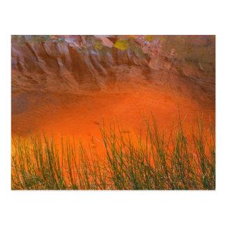 Cartão Postal Reflexão na garganta do vale da garganta | da