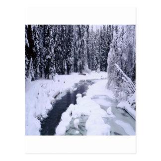 Cartão Postal Rio nevado do inverno da natureza