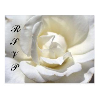 Cartão Postal Rosa branco, RSVP