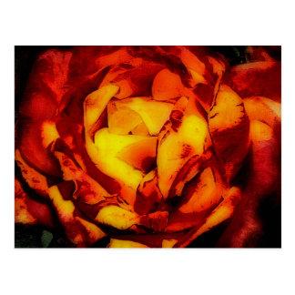 Cartão Postal Rosa vermelho e amarelo