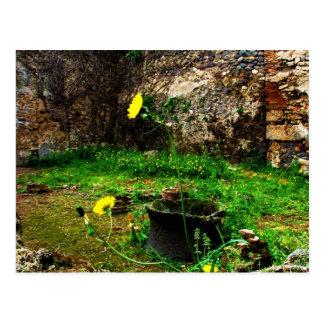 Cartão Postal Ruínas antigas de Pompeii