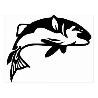 Cartão Postal Sacudir dos peixes