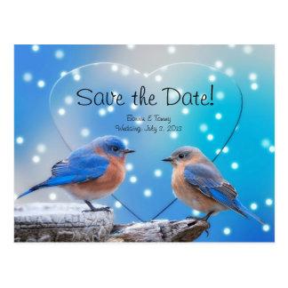 Cartão Postal Salvar os Bluebirds da data