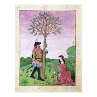 Cartão Postal Seiva do desenho de uma árvore