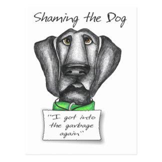 Cartão Postal Shaming o laboratório do preto do cão