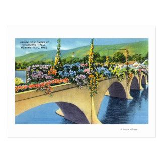 Cartão Postal Shelburne cai ponte das flores