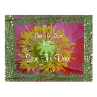 Cartão Postal Siga seu coração