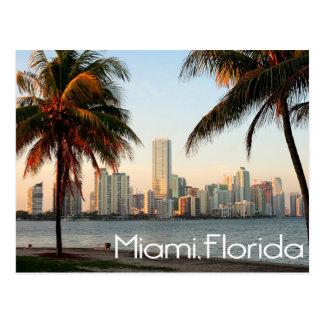 Cartão Postal Skyline e porto de Miami Florida na noite EUA