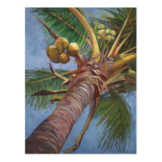 Cartão Postal Sob a árvore de coco